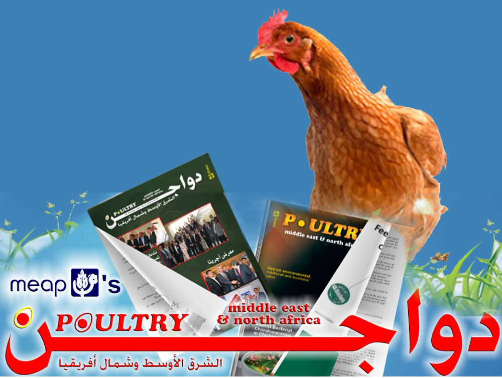 Poultry Middle East and North Africa