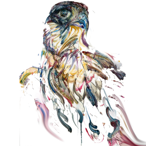 painting_feathers_falcon500.png